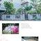 雲林婚攝 婚禮紀錄 敬添&綉芬 喜洋洋宴會廳雲林(編號:253224)