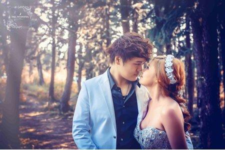 (D&L 婚禮事務)台中婚紗 婚紗攝影 九天森林 自助婚紗