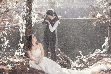 (D&L 婚禮事務)台中婚紗 婚紗攝影 落羽松 自助婚紗 平面攝影
