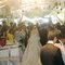 青青食尚花園會館婚禮記錄結婚迎娶婚禮記錄動態微電影錄影專業錄影平面攝影婚紗攝攝影婚禮主持人(編號:196844)