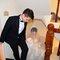 蜜月婚攝婚錄綠光花園結婚迎娶儀式晚宴婚禮記錄結婚迎娶婚禮記錄動態微電影錄影專業錄影平面攝影婚攝婚禮主持人(編號:234465)