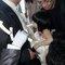 汐止那米哥餐廳婚宴會館餐廳婚攝j婚錄結婚迎娶婚禮記錄動態微電影錄影專業錄影平面攝影婚禮紀錄婚攝婚錄主持人(編號:280606)