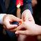 訂婚/彰化 全國麗園(編號:155030)