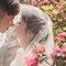 WEDDING(編號:492152)