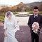 WEDDING(編號:492196)