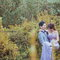 WEDDING(編號:492506)