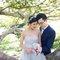 澳洲旅拍婚紗 02(編號:540063)