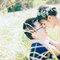 澳洲旅拍婚紗 02(編號:540066)