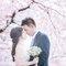 婚紗(編號:486206)