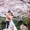 婚紗(編號:486215)