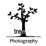 Tree Photography!