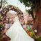 婚禮紀實:Cony&Jason-青青食尚(戶外證婚)(編號:184953)