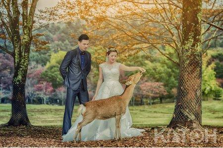 海外婚紗攝影(Katoh 婚攝)