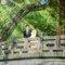 婚攝katoh_1896_2017-7-9