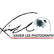 XavierLee Photo 蛋攝
