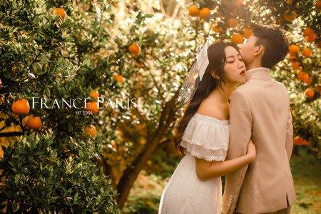 初夏橘子色