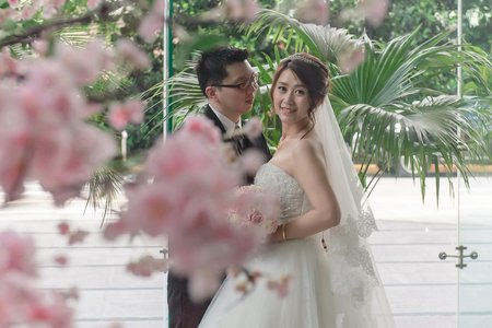 Wedding | 新店頤品大飯店