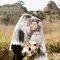 美式婚紗婚禮紀錄-戶外婚禮-Pre-Wedding-Amazing Grace攝影美學主郁 (32)