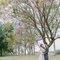 自助婚紗-美式婚紗-Amazing Grace攝影-美式婚禮-台中婚紗-台北婚紗-美式婚禮 (18)
