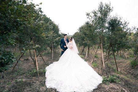 婚禮記錄|聖証 ❤ 奕如 嘉義小原餐廳