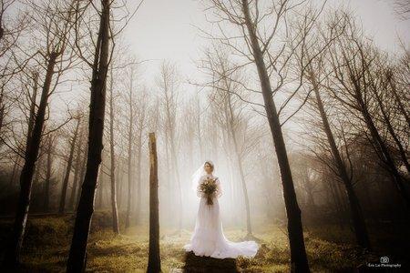 個人婚紗寫真方案