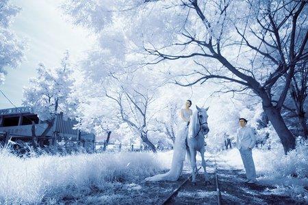 IR紅外線婚紗攝影
