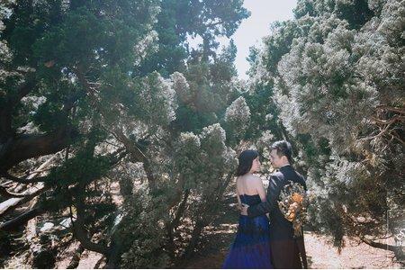 小森林-紗法亞精品婚紗sapphire wedding婚紗相本