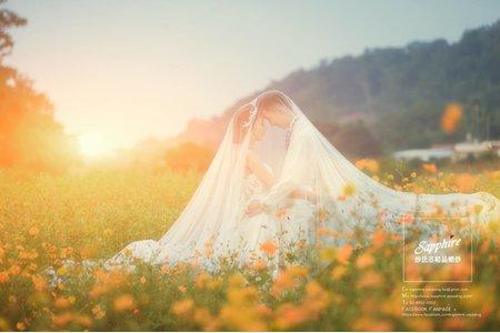 紗法亞Sapphire wedding婚紗相本_10月客樣
