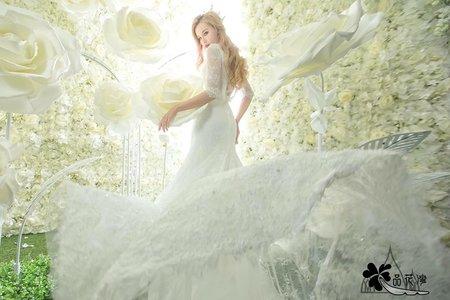 品花灣-白色背景白大花