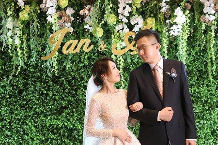 台北萬豪婚佈 立體綠植牆背板設計款