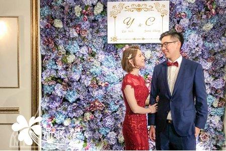 晶華婚佈 紫花牆木板款