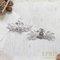 銀白花冠水鑽珍珠