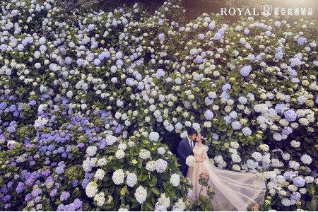 蘿亞主題婚紗攝影【繡球花戀】