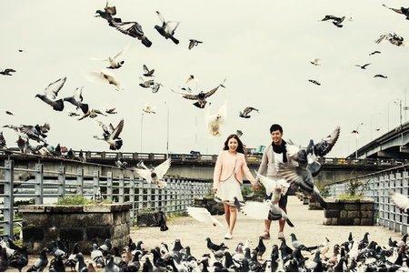 在地婚紗系列~飛翔吧!我的愛