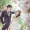 熟悉的角落 是最美麗的風景  希臘婚禮  新人分享 智&芸(編號:423744)