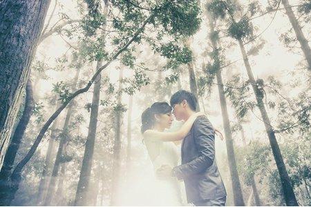 『婚紗攝影』家陞&舒閔