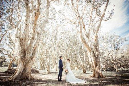 海外婚紗 - 澳洲雪梨