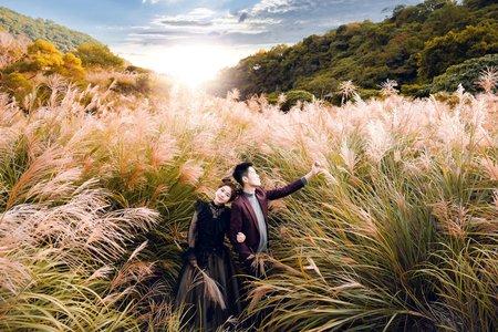 大自然清新婚紗(森林、陽光、繡球花、海邊、芒草、夜景、中式)