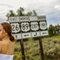『海外婚紗』美國優勝美地國家公園+西部公路 Oversea in Yosemite National Park(編號:51169)
