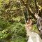 芒草花 落羽松 陽明山 香港來台拍婚紗(編號:51521)