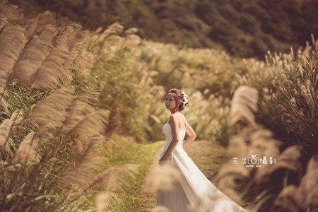 芒草花 落羽松 陽明山 香港來台拍婚紗