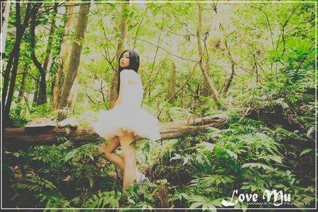 精靈停在森林裡