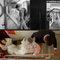 [凱瑟琳]中式風格婚禮攝影 #1(編號:429297)