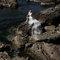 18PHOTO自主婚紗-自信與優雅的征服(編號:214898)