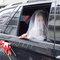 18PHOTO-TIM❤️ ROSA 結婚(編號:308334)