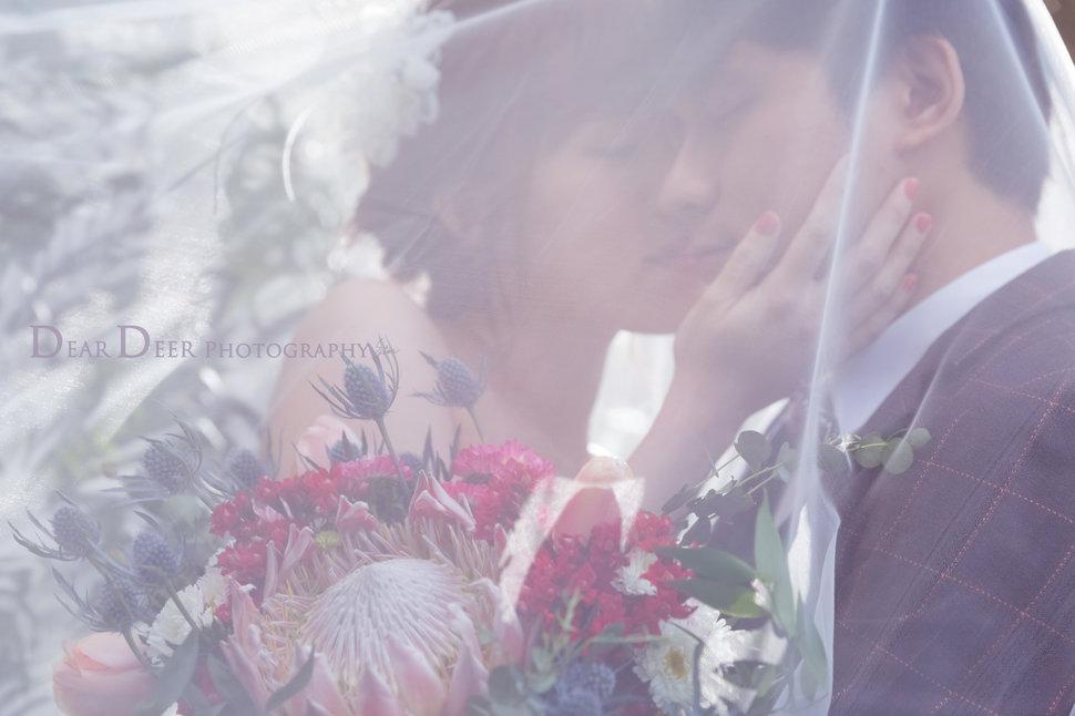 Dear Deer|夢幻精靈風格(編號:1280410) - Dear Deer鹿兒攝影|女攝影師蘇蔓《結婚吧》