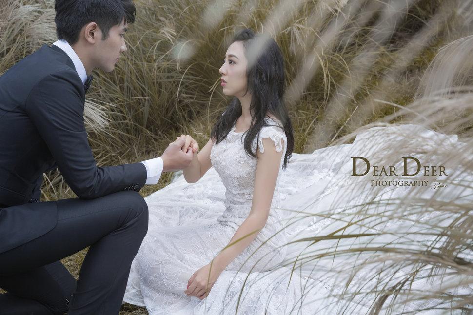 Dear Deer|夢幻童話風格(編號:1280414) - Dear Deer鹿兒攝影|女攝影師蘇蔓 - 結婚吧