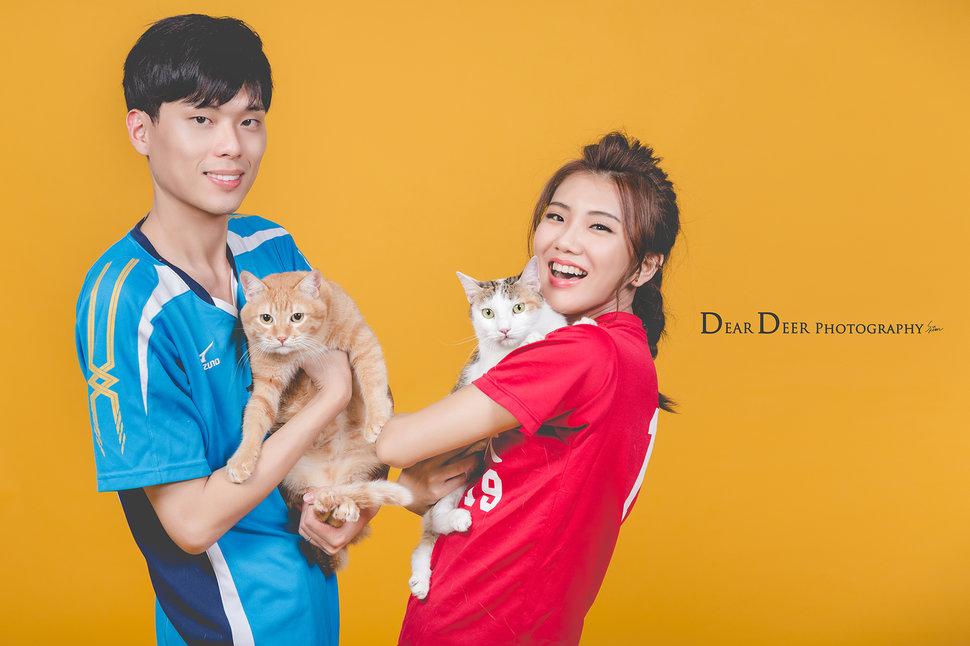 Dear Deer|經典韓系棚拍(編號:2822836) - Dear Deer鹿兒攝影|女攝影師蘇蔓 - 結婚吧