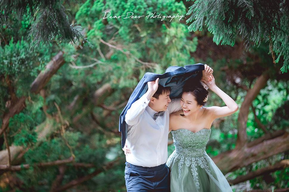 Dear Deer|同志婚紗(編號:4116761) - Dear Deer鹿兒攝影|女攝影師蘇蔓《結婚吧》