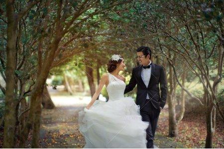 婚紗|婚紗攝影/台灣之美-流光樹影